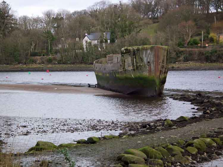 The Creteboom, a concrete boat launched in 1919, is one of the best known sights in the River Moy at Belleek Wood, Ballina, Co Mayo. Photo: Anthony Hickey