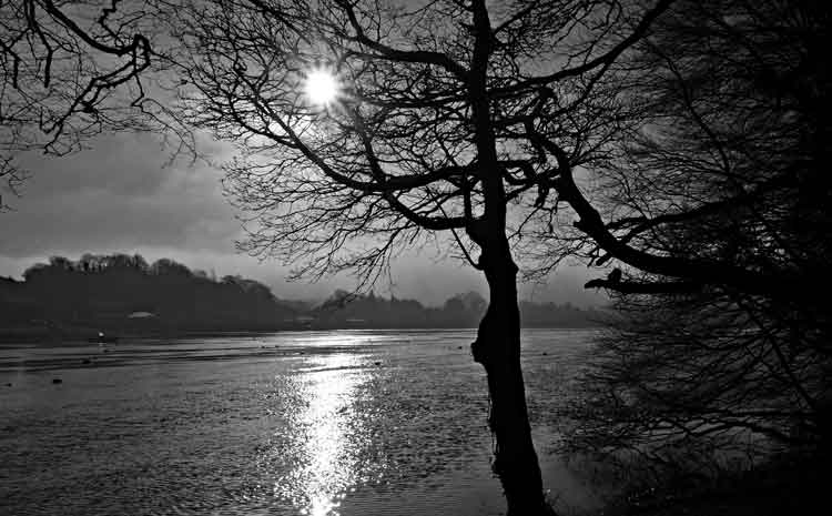 Sunshine on the River Moy, Ballina, moments before a thick fog enveloped the river and Belleek Wood, Friday February 12, 2016. Photo: Anthony Hickey