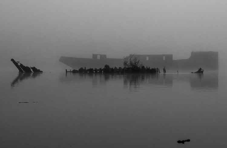 The Creteboom wreck on the River Moy in Belleek Wood, Ballina, Co Mayo, is barley visible through the thick fog. Photo: Anthony Hickey