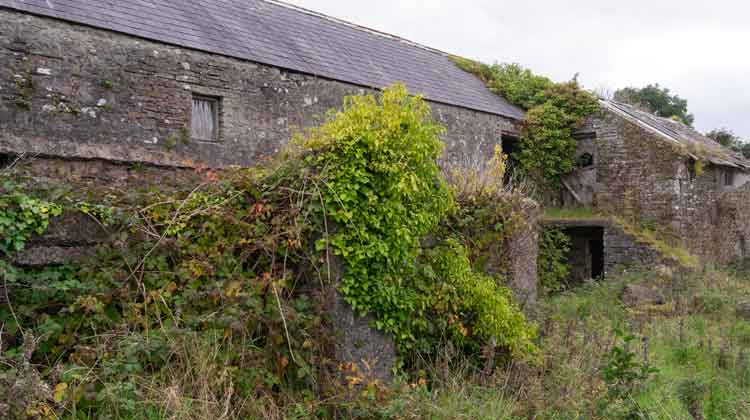 The ruins of an old flax beside Ballyglass bridge echoes a time in the 19th century when North Mayo produced flax fibre for the linen industry in Northern Ireland. Photo: Anthony Hickey