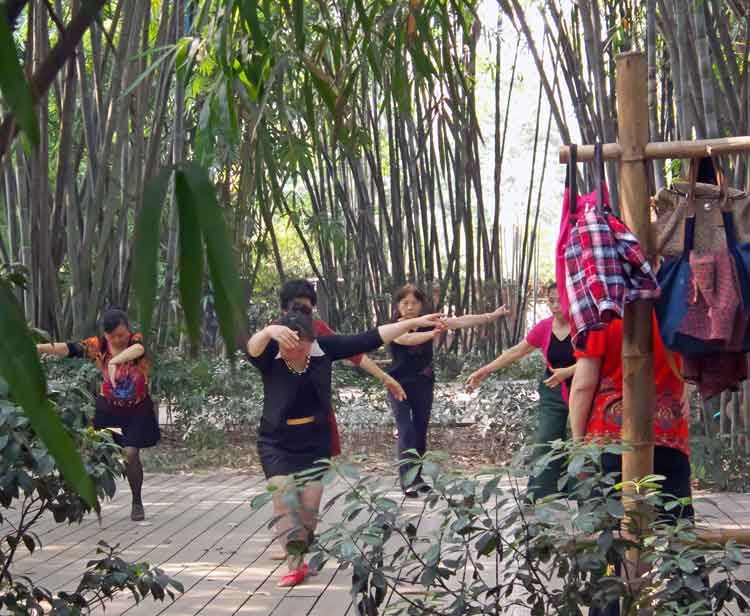 Women dancing under the shade of the bamboo trees in Wangjiang Park, Chengdu, China. Photo: Anthony Hickey
