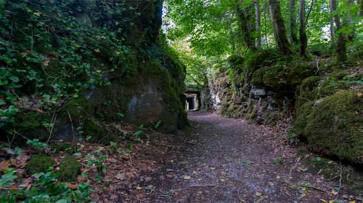 The Cong Wood nature trail passes under stone viaducts that carry the road from Cong to nearby Clonbur. Photo: Anthony Hickey