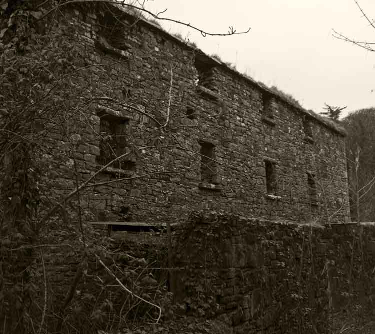 Palmerstown Mill, Palmerstown, Castlereagh, Killala, once a thriving flax mill, is now a ruin. Photo: Anthony Hickey