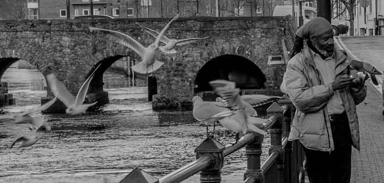 Feeding the birds on the banks of the Garavogue River in Sligo. Photo: Anthony Hickey