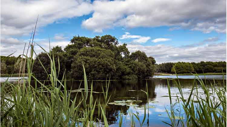 Clare Lake is at the heart of McMahon Park, Claremorris, Co Mayo. Photo: Anthony Hickey