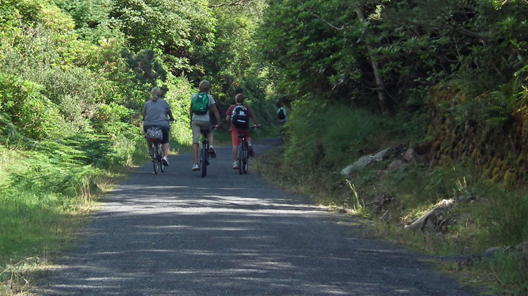 Cycling the Great Western Greenway in Mulranny. Photo: Anthony Hickey