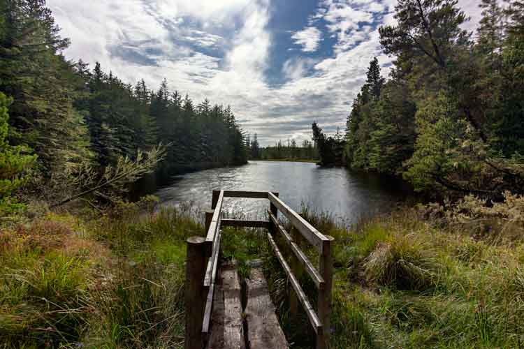 Lough Naweela at the heart of Blanemore Forest near Moygownagh in Co Mayo has has a mysterious quality about it. Photo: Anthony Hickey