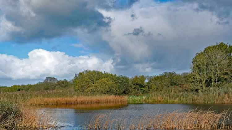 Lough Calog along the Ballina to Killala Greenway. Photo: Anthony Hickey