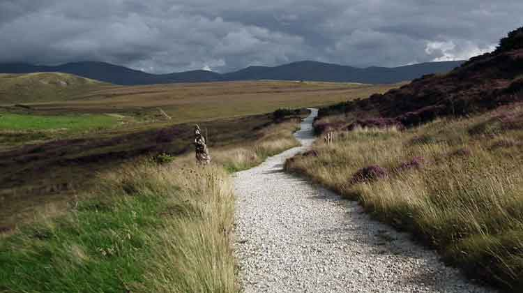 The views of the Nephin Beg mountain range on the Ballycroy National Park nature trail are spectacular. Photo: Anthony Hickey