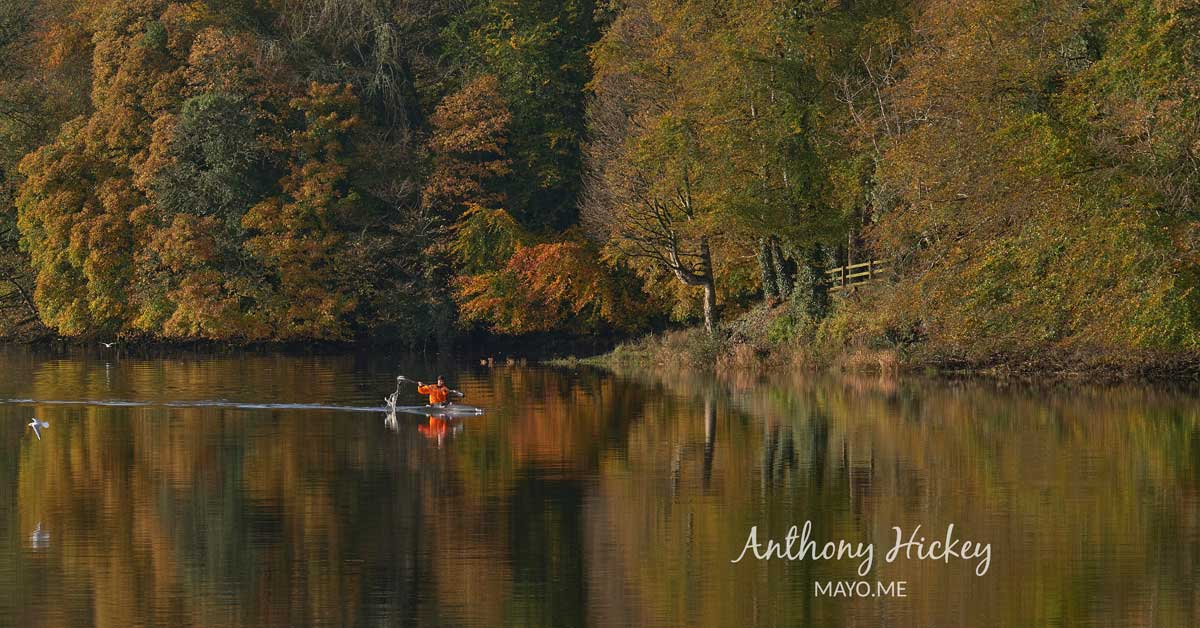 A kayaker on the River Moy in Autumn. Photo: Anthony Hickey
