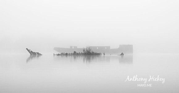 moy-fog